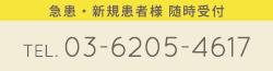 やすらぎ歯科虎ノ門 急患・新規患者様随時受け付け中 TEL 03-6205-4617